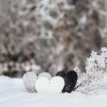 متنی درباره زمستان