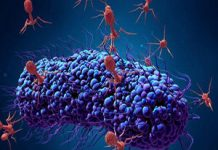 کرونا ویروس و درمان ان