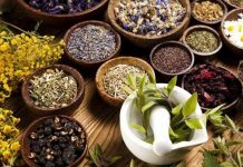 داروهای گیاهی برای درمان کرونا