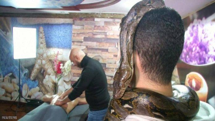 snake masage